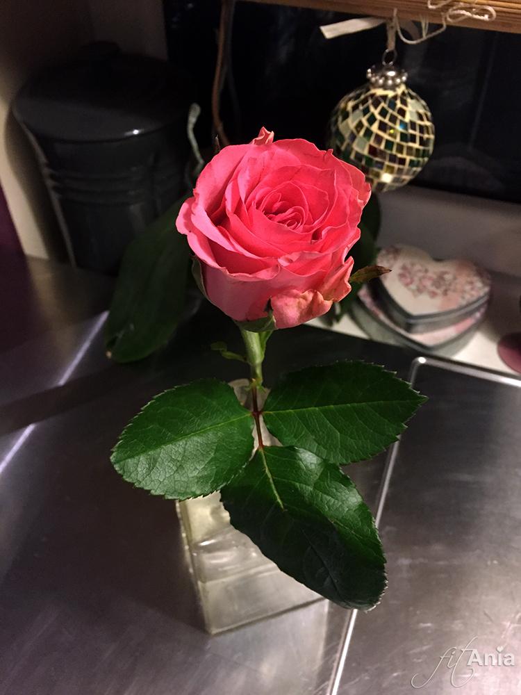 Podobno jestem jedyną kobietą, która dostaje kwiaty za wredotę. ❤️
